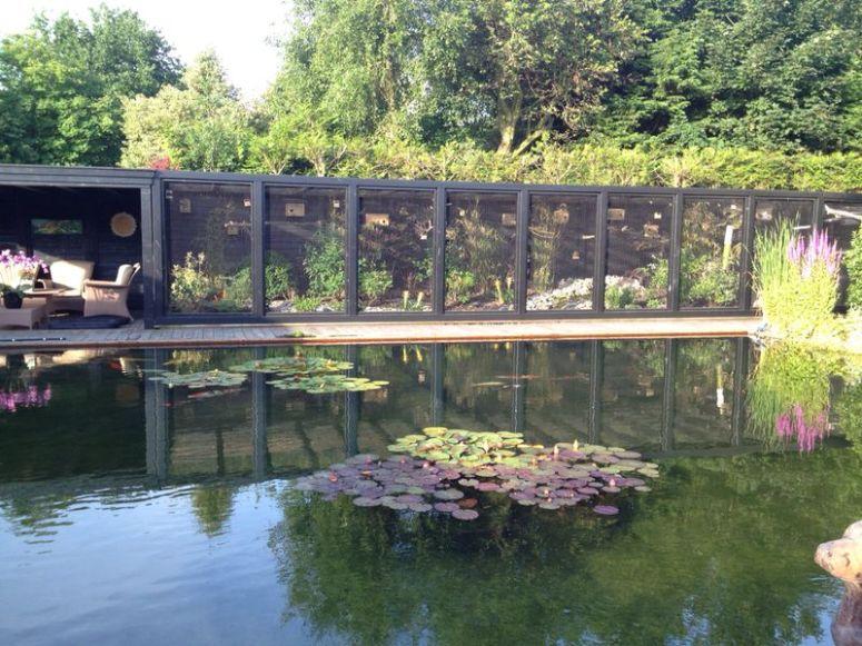 Vijver koivijver vlonder zwembad voliere - Noorddammerweg, De Kwakel