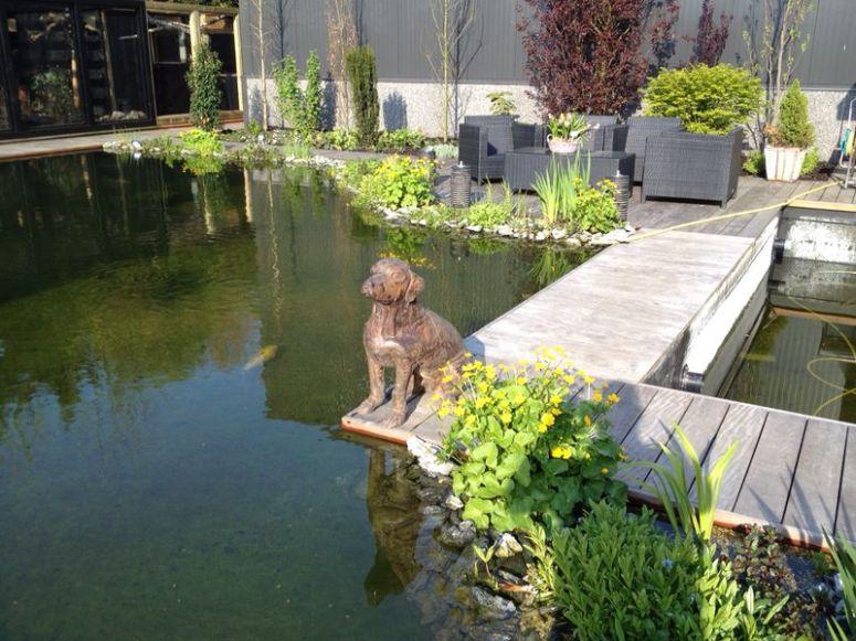 Vijver koivijver voliere zwembad vlonder - Noorddammerweg, De Kwakel