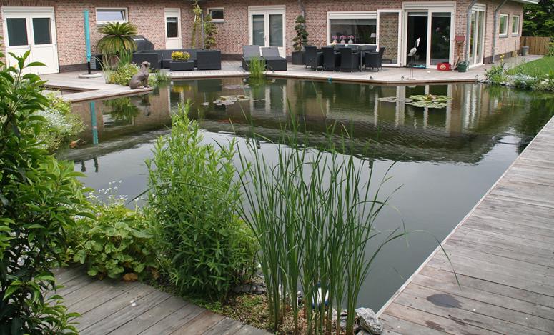Vijver koivijver zwembad vlonder - Noorddammerweg, De Kwakel