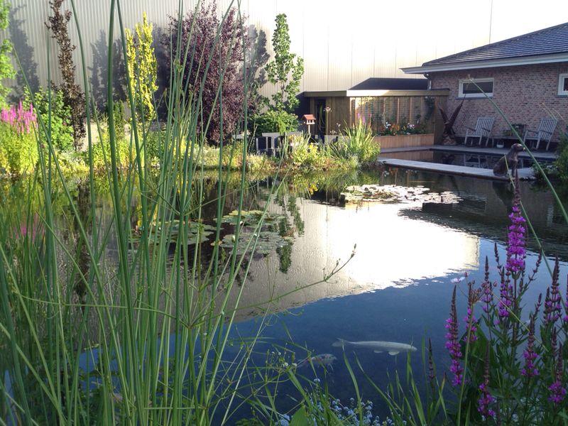 Vijver koivijver vlonder zwembad - Noorddammerweg, De Kwakel